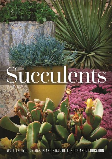 Drought tolerant plants for Succulents that do well in shade