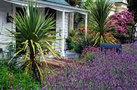 Cottage Garden Design Agriculture Arboriculture