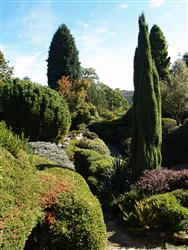 Garden Design Certificate | Distance Education
