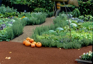 Study Advanced Permaculture Online Distance Education